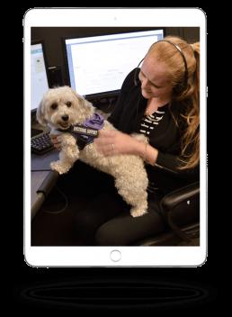 Agent with dog on ipad